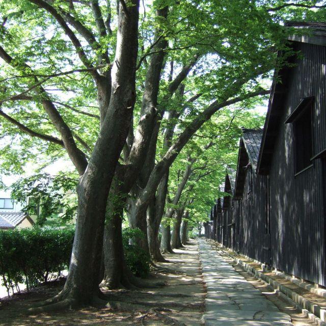観光スポット|酒田さんぽ - 山形県酒田市の観光・旅行情報
